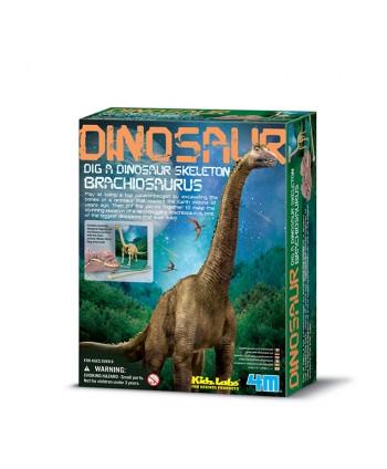 Kidzlabs paleontología...