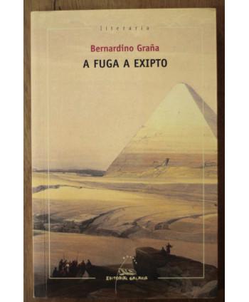 A fuga de Exipto